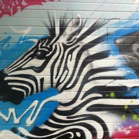 Joax-zebra
